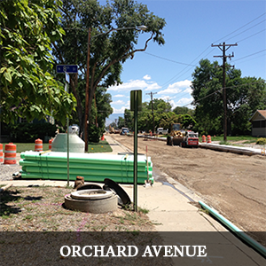 Orchard Avenue Project